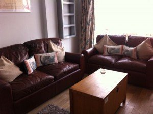 chocolate brown sofas