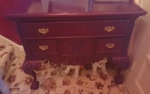 mahogany drawers